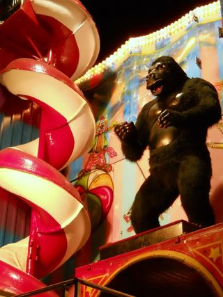 tennessee valley fair gorilla
