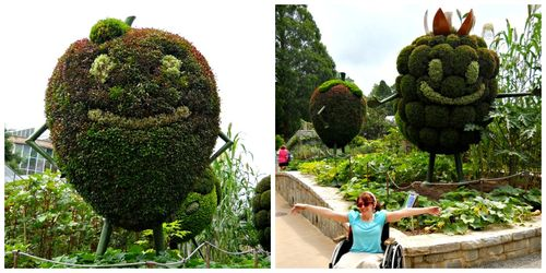 Atlanta Botanical Garden Imaginary Worlds Giant Berries Edible Garden